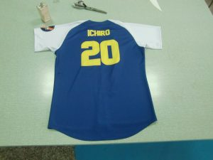 Sublimated Baseball Jersey Team Lark Back of Jersey